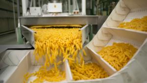 Produzione industriale di pasta