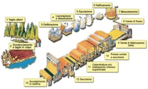 fasi di produzione della carta