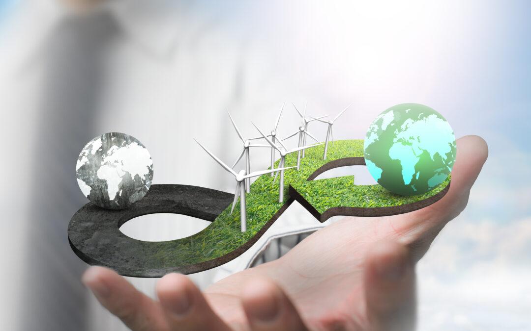 Economia circolare esempio: l'industria della carta